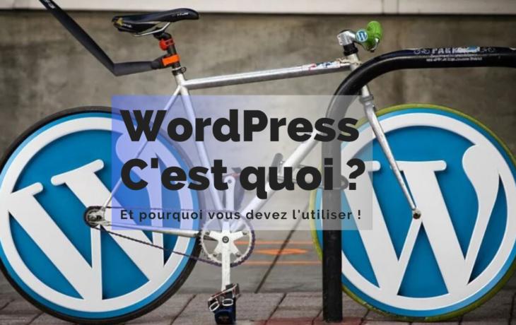 WordPress, C'est quoi ?